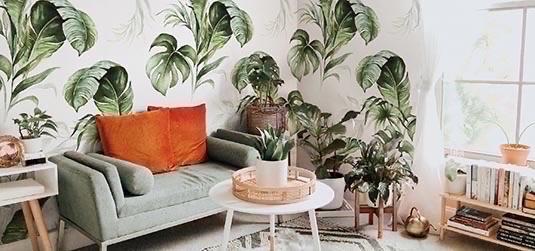 Vous rêvez d'un magnifique papier peint floral ? Les monsteras demeurent des valeurs sûres !